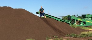Organic Composted Horse Manure